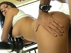 Darn Awesome Buxom Whore Sophia Leone Undoubtedly Knows How To Rail Dick