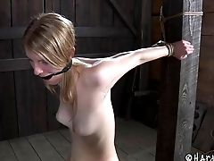 Restraint Bondage Cowgirl With Nice Honeypot Lovely Spread When Tantalized