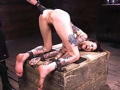 Foxy Tattooed Porn Industry Star Rocky Emerson Likes Being Tied Up. Hd