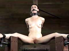 This Horny Restrain Bondage Master Witnesses A Lot Of Scary Movies